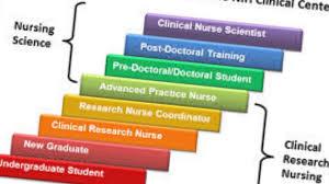 essay on importance of nursing profession   essay the importance of research to nursing profession you