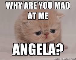 Why are you mad at me Angela? - Super Sad Cat | Meme Generator via Relatably.com