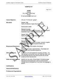 Cv Template English Fragtk  short resume english pics photos short     Pinterest