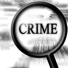 research paper on organised crimes in words