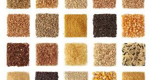 10 ancient grains to watch: farro (emmer), spelt, kamut (khorasan ...