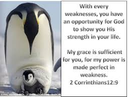 every weaknesses you have an opportunity for god to show you every weakness 2 corinthians 12 9