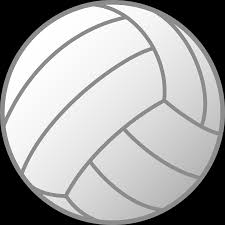 Image result for volleyball vector image