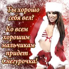 С новым 2017 годом! С годом Петуха! Images?q=tbn:ANd9GcQh8trJMmNYDYm1jBMMVOaKd8xs9ONPGSZL4WkS93oni7blXxpt