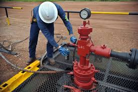 top highest paying jobs in south africa  6 petroleum engineers