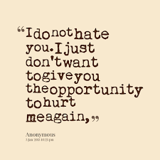 Funny Hate Quotes For Him. QuotesGram via Relatably.com