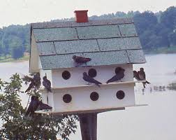 FREE PLANS FOR PURPLE MARTIN BIRDHOUSE   FREE FLOOR PLANSFREE PURPLE MARTIN BIRD HOUSE PLANS woodworking plans and