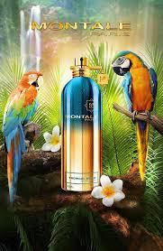 Мультигендерный парфюм <b>Montale Tropical Wood</b> | Унисекс, Духи ...