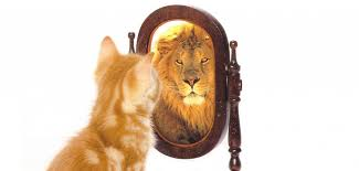 「self confidence」的圖片搜尋結果