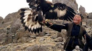 Image result for eagle huntress