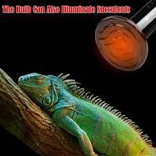 Набор <b>ламп</b> для рептилий с инфракрасным керамическим ...