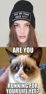 Grumpy Cat: Image Gallery | Know Your Meme via Relatably.com
