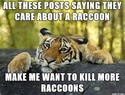 I hate raccoons - Meme on Imgur via Relatably.com