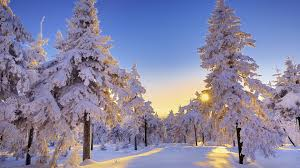 Image result for winter photos
