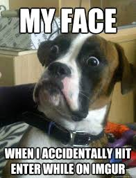 My face When i accidentally hit Enter while on ImGUR - Shocked Dog ... via Relatably.com