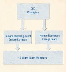 setting up a governance structure for successful culture change the co leads work the culture change team which can be made up of people in the organization representing a good sample of the workforce