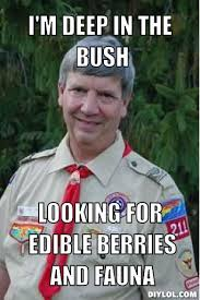 Harmless Scout Leader Meme Generator - DIY LOL via Relatably.com