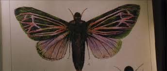 Resultado de imagen de The Mothman