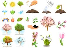 Flower <b>plants tree</b> free vector download (18,373 Free vector) for ...