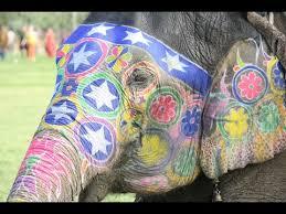 <b>Слоны Индия</b> (праздник <b>слонов</b> в <b>Индии</b>) - elephant <b>festival</b> in ...