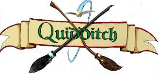 Image result for quidditch