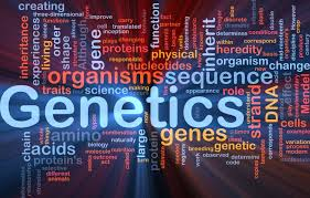 cracking the code of life reflection biology blogger genetics