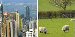 country life vs city life essayessay about city living and country living   essayforum