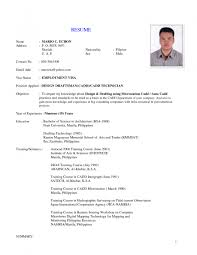 examples of resumes 11 resume form for job application basic 81 outstanding job application resume examples of resumes