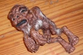 dead foetus in womb