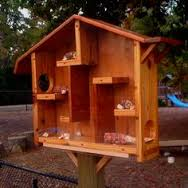 Squirrel nest boxes Houses Feeders and squirrel facts   Honey Do    Squirrel house for jcc