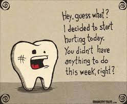 Tooth pain is no fun! Call us today to get an appointment ... via Relatably.com
