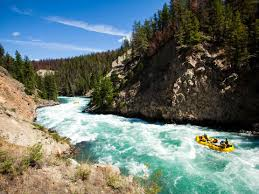 Image result for pics of whitewater rafting