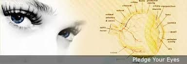 Pledge Eyes | Eyes Donation | Vydehi Hospital Bangalore India