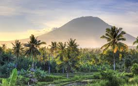 Image result for indonesia pics