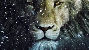 narnia s aslan isn t good he s a pious tyrannical bully narnia s aslan isn t good he s a pious tyrannical bully godlessness in theory