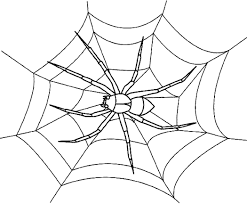 Small Picture Spider Coloring Pages 1 olegandreevme