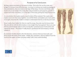 the anatomy of an essay the anatomy lesson of dr  nicolas tulp by    purpose of a conclusion writing a good conclusion of an essay is tricky  the writer
