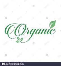 Organic food sign <b>calligraphy</b> with green leaf symbolizing ...