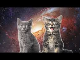 <b>Space Cats</b> — Magic Fly - YouTube