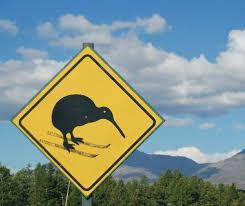 """Résultat de recherche d'images pour """"kiwi land"""""""