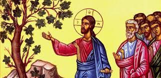 Resultado de imagem para Lucas 13,1-9