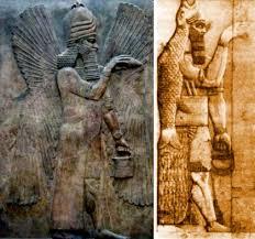 Risultati immagini per uomini pesce mitologia