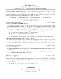 examples of resumes professional writing resume sample for  examples of professional resumes writing resume sample writing for 87 excellent examples of professional resumes