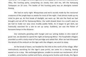 narrative essays example