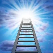 climbing up the online rankings ladder part  follow the procedure