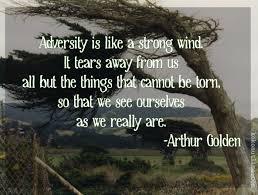 adversity kokonutlime books as