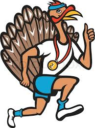 Image result for exercising turkey