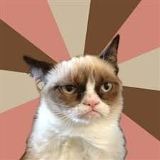 Grumpy cat on Pinterest | Grumpy Cat Meme, Meme and Walking Dead via Relatably.com