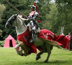 Image result for jousting