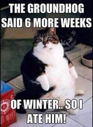 6 More Weeks of Winter: The Memes You Need to See | Heavy.com | Page 6 via Relatably.com